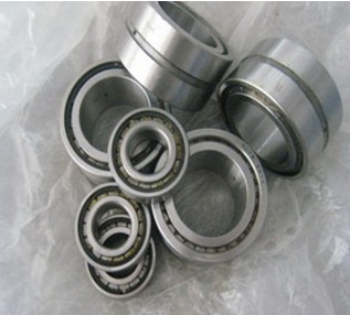 Double row with double-sealed tank filled Moving only Cylindrical Roller Bearings-SL0450 Series